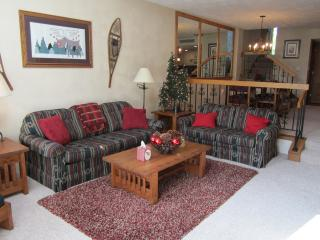 The Village Moose Ski-In Luxury Cond-Seven Springs - Rockwood vacation rentals