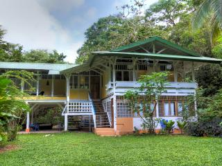 Bilbo: A Historic Beach Front Estate - Puerto Viejo de Talamanca vacation rentals