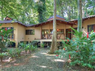 Casa Koda: Jungle & Beachfront - Cocles vacation rentals