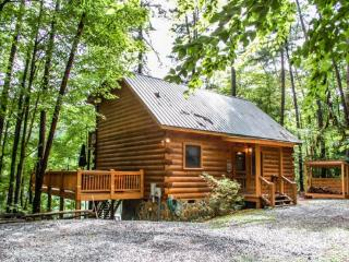 CHERRY ACRE*CHARMING TWO BR/TWO BA~LOG CABIN ON CHERRY LAKE~HOT TUB~PRIVATE DOCK FOR FISHING AND SWIMMING~ON SECTION 7 OF BENTON - Blue Ridge vacation rentals