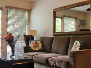 August & September Special! Stay 3 or more nts and get the 4th night free! 1bd/1ba Aina Nalu Family Friendly Unit J204 - Lahaina vacation rentals