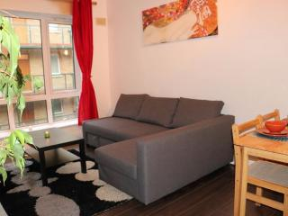 Very Central Location 1 Bed Apartment Dublin - County Dublin vacation rentals