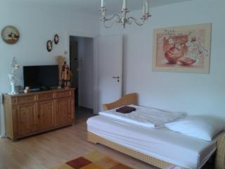 Vacation Apartment in Essen - 323 sqft, central, comfortable, modern (# 5318) - North Rhine-Westphalia vacation rentals
