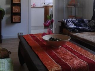 Vacation Apartment in Essen - 323 sqft, central, comfortable, modern (# 5315) - North Rhine-Westphalia vacation rentals