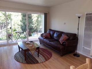Beautiful 2 Bedroom in Berkeley, CA - Berkeley vacation rentals