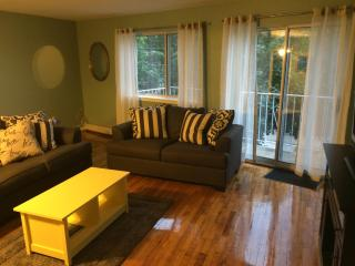 Spacious retreat in Astoria Queens - Queens vacation rentals