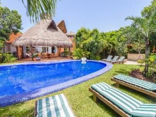Laguna Encantada - Contemporary villa offers pool, tropical garden views & zen style decor - Akumal vacation rentals