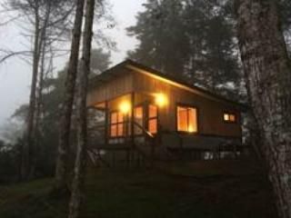 Beautiful Mountain Top Cabin with Volcano Views - Turrialba vacation rentals