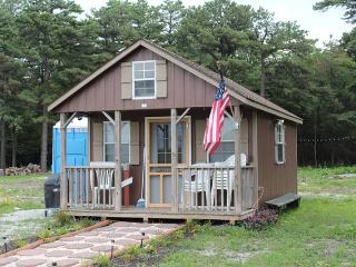 Charming Small Cabin With Loft - Biglerville vacation rentals