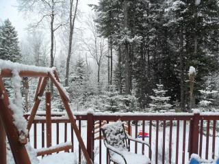 Secluded Log Cabin yet still close to town - Adirondacks vacation rentals