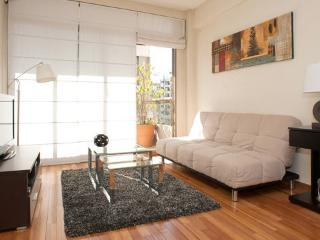 Cute apartment well located 1BD1BTH - Buenos Aires vacation rentals