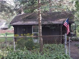 The Cabin on Top of Cedar - Illinois vacation rentals