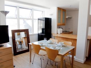 Piccadilly Circus & Covent Garden Cool 2 bed - London vacation rentals