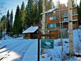 Beautiful 6BR ski-in ski-out house on Snowmass mountain - Snowmass Village vacation rentals