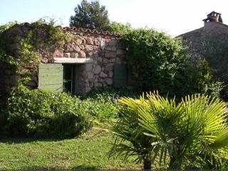 In the heart of the Varoise country, small gîte with garden and pool - Var vacation rentals