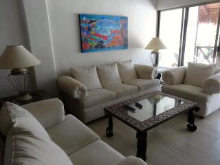 BEAUTIFUL 3 BR PENTHOUSE NEAR COCO BEACH -PALENQUE - Playa del Carmen vacation rentals