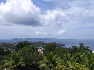 Liberty Villa-best view of the Grenadines! - Kingstown vacation rentals