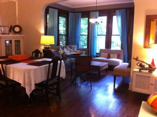 3 bedroom large unit, close to lake, train, restaurants - Chicago vacation rentals
