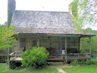 Original log cabin with one upstairs bedroom, fireplace, kitchen - Charlottesville vacation rentals