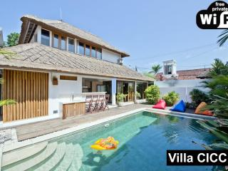 FINE LUXURY BUTLER VILLA❤HUGE+CENTRAL❤POOL❤我们讲中文 - Seminyak vacation rentals