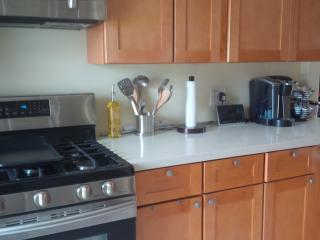 Last Minute Deal!!  $199.00 4bdroom Luxury House - Anaheim vacation rentals