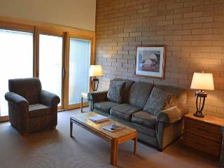Bigwood Condo-D5 - Ketchum vacation rentals