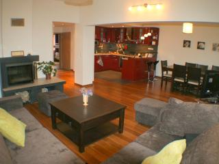 Large luxe flat in City Center - Gabrovo vacation rentals
