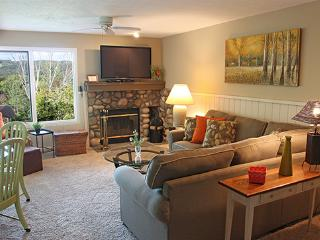 Beautiful condos to choose from - Debby Castelein