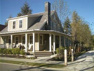 Central Park w/ Carriage House - Pacific Beach vacation rentals