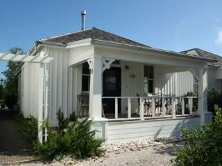 Katya`s Cottage - Pacific Beach vacation rentals