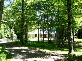 Stowe Stone Cottage in pristine Sterling Forest - North Palmetto Point vacation rentals