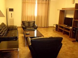 2 bedrooms executive furnished apartment at airport residential area available for short let. - Accra vacation rentals
