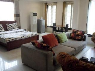 1 room executive Lodge located at airport residential area available for rent. - Accra vacation rentals