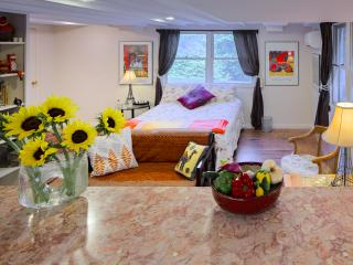 Refreshing Studio 3.6 miles to Downtown Asheville - Asheville vacation rentals