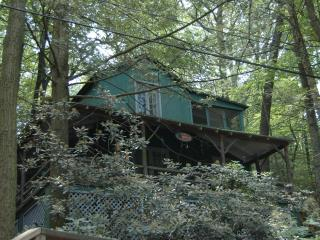 Vintage Cottage in the Woods - Mount Gretna vacation rentals