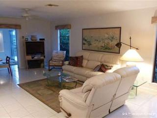 Boater's Paradise, 3 bedrooms, boat dock - Florida South Central Gulf Coast vacation rentals