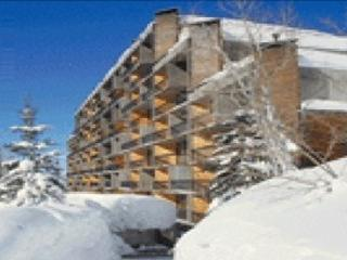 Famous Iron Blosam Lodge,Snowbird! Nov.15-22, slps.8, Only $299 for entire week's stay! - Image 1 - Snowbird - rentals