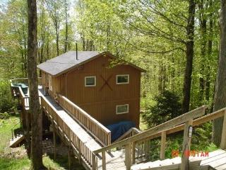 FANTASTIC ski Chalet for your family! - Southeastern Vermont vacation rentals