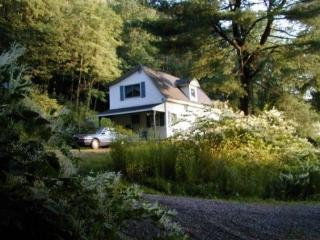 Little House on Pine Hill in Walton - Walton vacation rentals