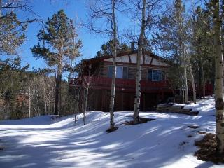 Mountain Cabin - Divide vacation rentals