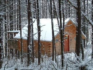 Hocking Hills-Getaway Cabins - South Bloomingville vacation rentals