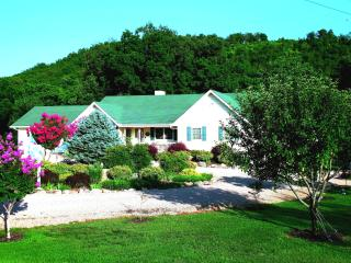 North Fork and White River Lodge / B&B - Norfork vacation rentals