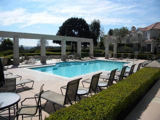 GREAT LOCATION FOR VACATION - Aliso Viejo vacation rentals