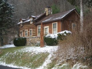 Authentic Pioneer Cabin Beautifully Restored - Shenandoah Valley vacation rentals