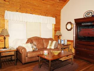 Luxury Cabin with All the Amenities, Pools, Wi-Fi - Pigeon Forge vacation rentals