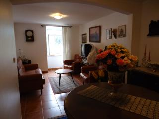 Moutain refuge in a cosy village - Coimbra District vacation rentals