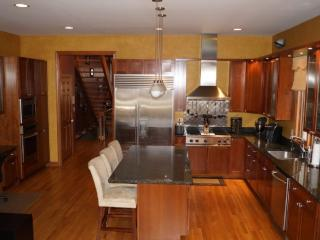 Lincoln Park Custom Single Family Home - Illinois vacation rentals
