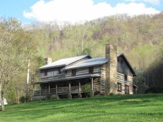 Beautiful Authentic Hand Hewn Log Cabin - Hot Springs vacation rentals