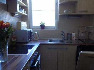 Ensuite apartment in the centre of Budapest - Hungary vacation rentals