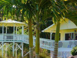 Ocean View Cottage Cleanliness Serene Location - Hakalau vacation rentals